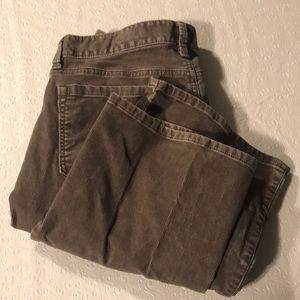 Ann Taylor Loft corduroys. 8P curvy boot. Size 29